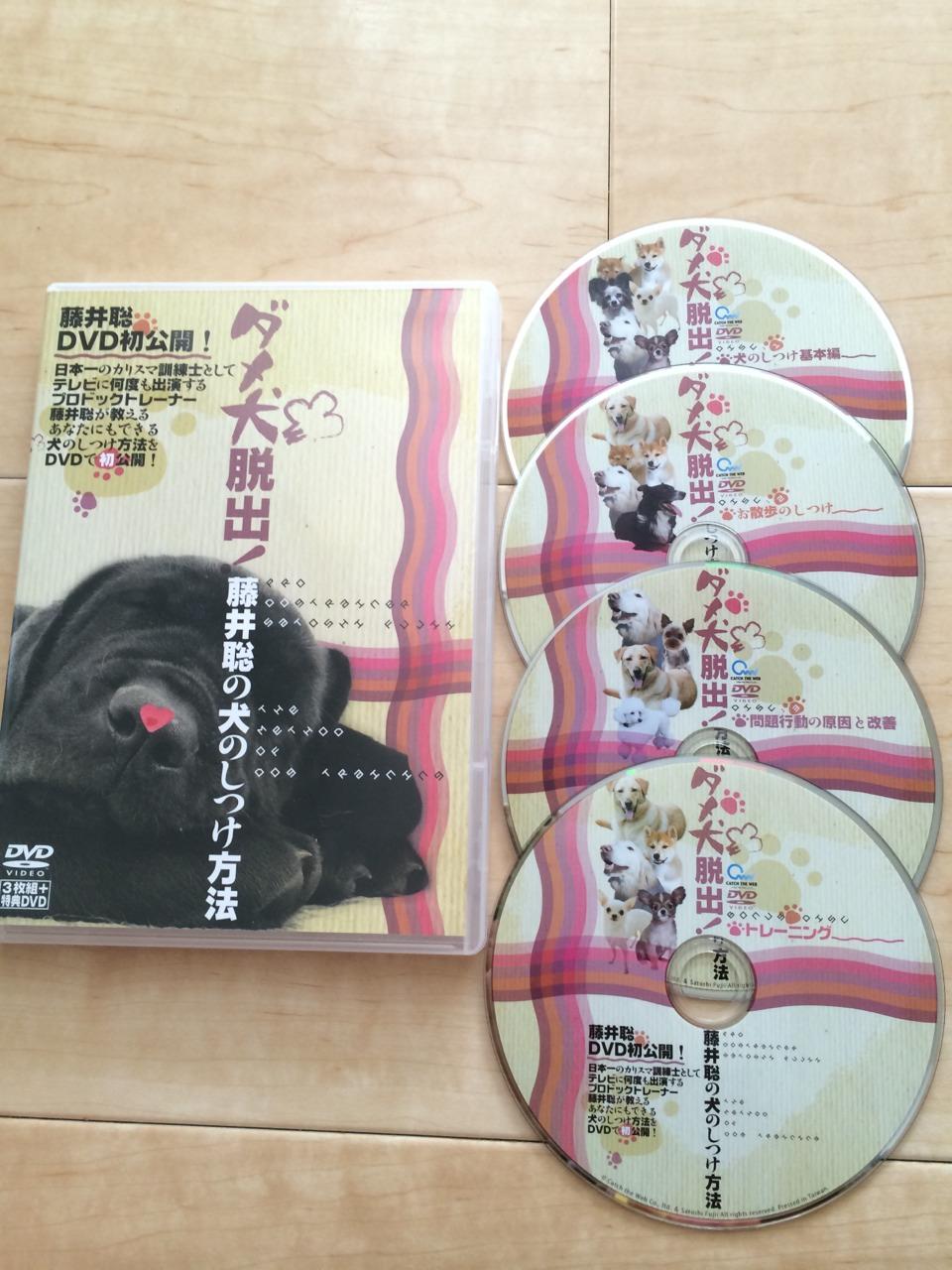 ドッグトレーナー藤井聡の犬のしつけDVDの実践レビュー