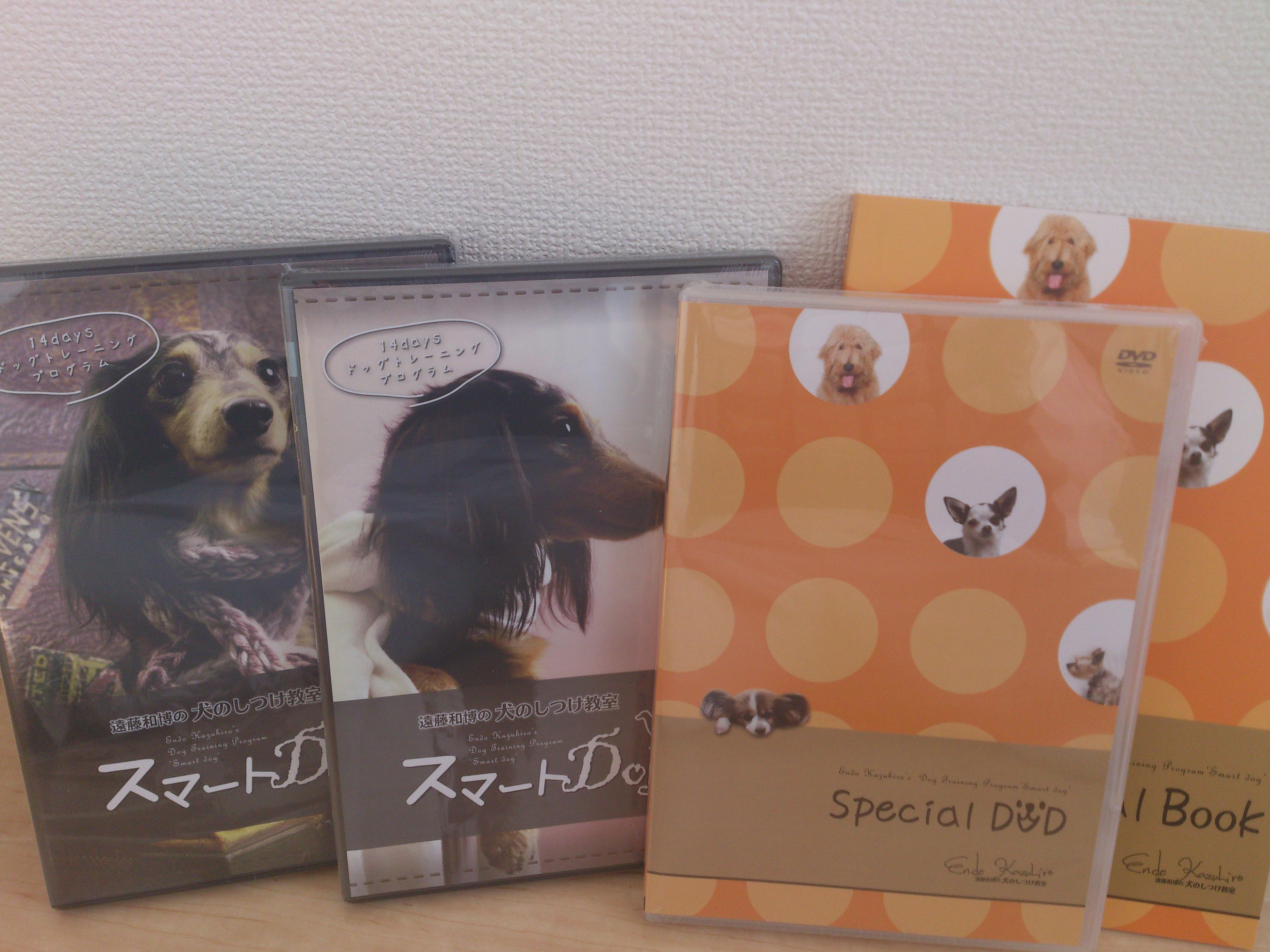 チェーンカラーで犬をしつける遠藤和博の評判